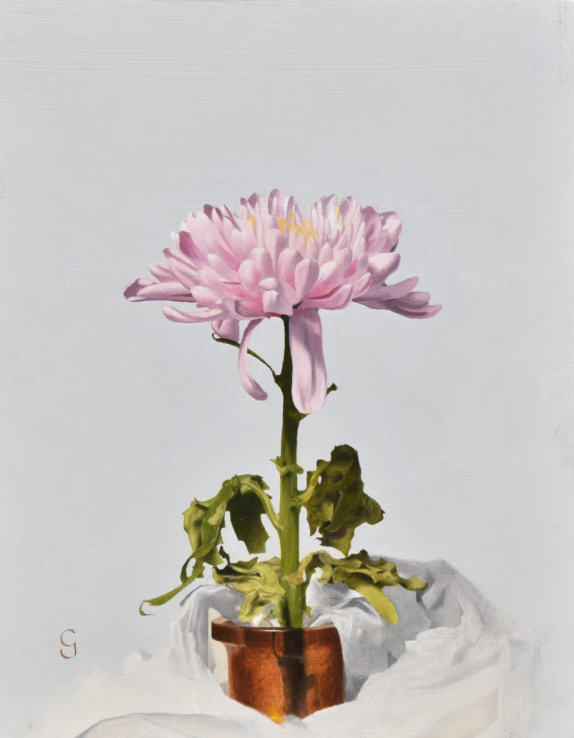 Chrysanthemum, 14″ x 11″, Oil on Panel