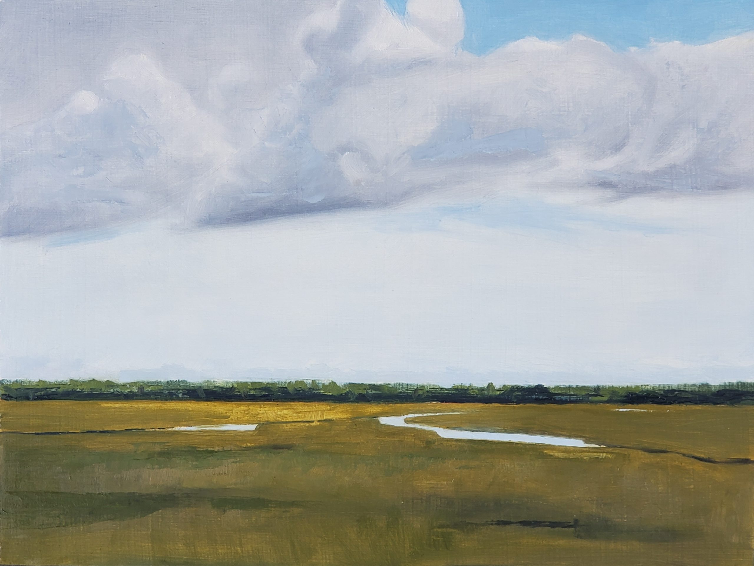 Sunlit Marsh - 9 x 12 - Oil on Panel