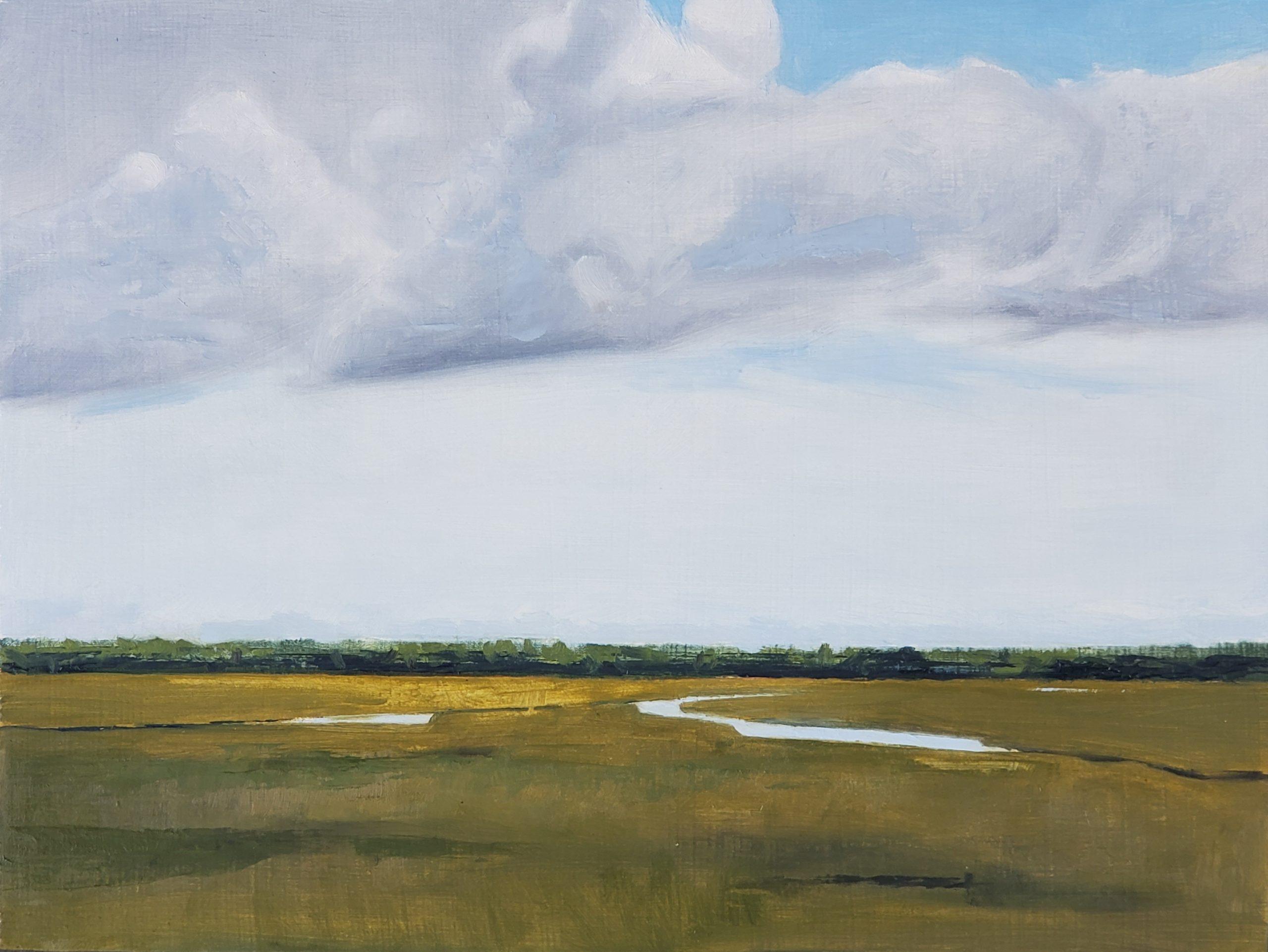 Sunlit Marsh, 9″ x 12″, Oil on Panel